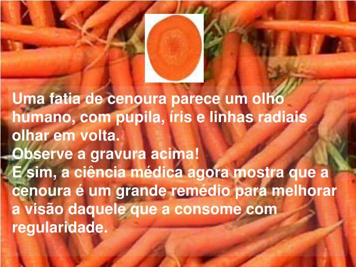 Uma fatia de cenoura parece um olho humano, com pupila, íris e linhas radiais olhar em volta.