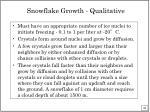 snowflake growth qualitative