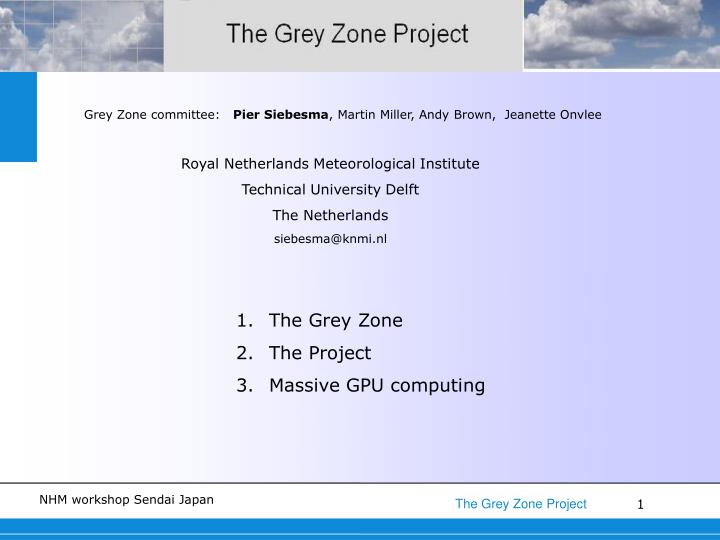 Grey Zone committee: