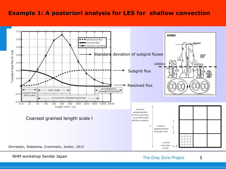 Example 1: A posteriori analysis for LES for  shallow convection