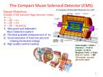 the compact muon solenoid detector cms