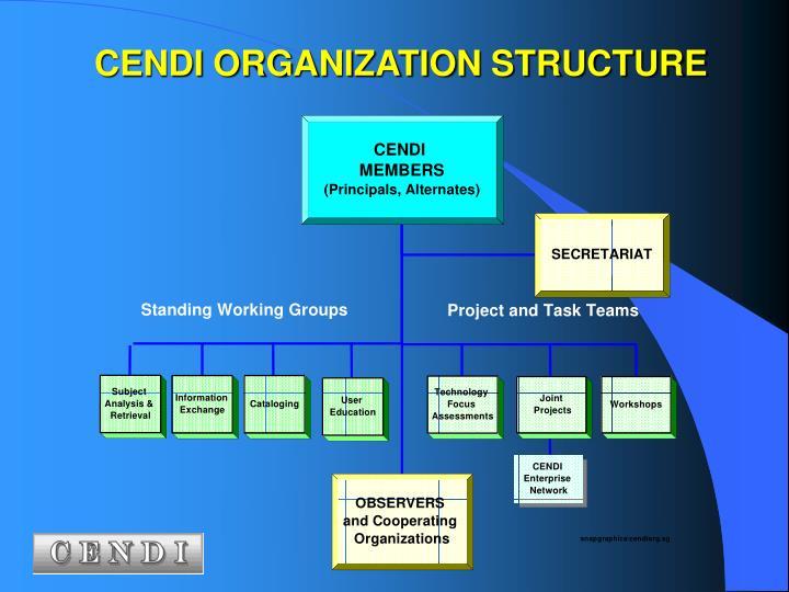 CENDI ORGANIZATION STRUCTURE
