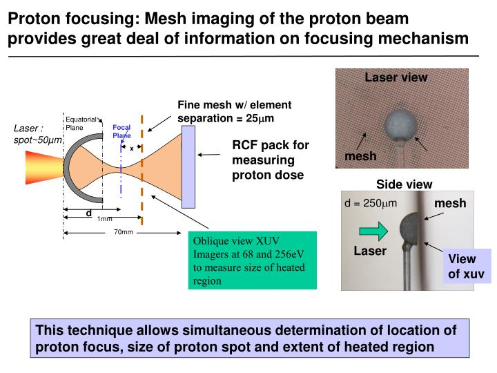 Proton focusing: Mesh imaging of the proton beam provides great deal of information on focusing mechanism
