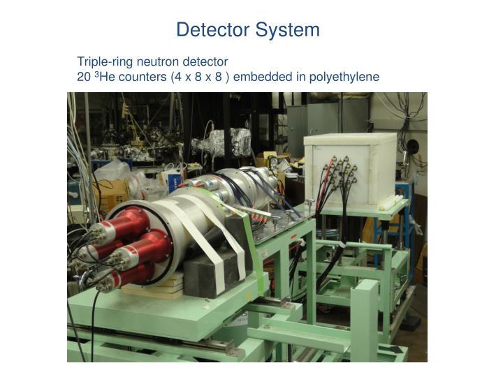 Detector System
