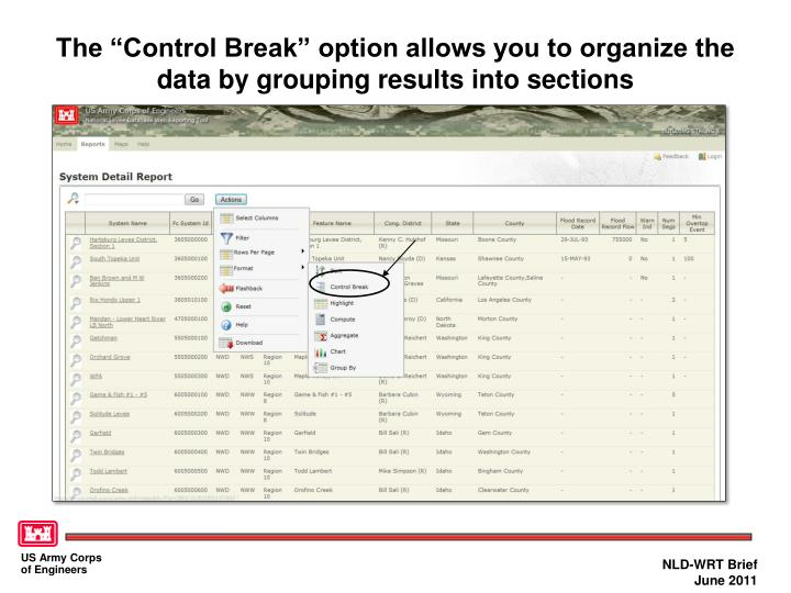 """The """"Control Break"""" option allows you to organize the data by grouping results into sections"""