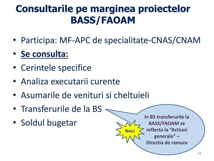Consultarile pe marginea proiectelor BASS/FAOAM
