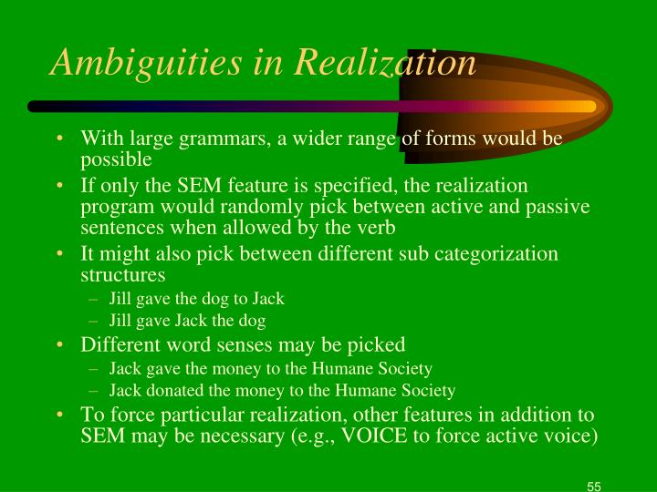 Ambiguities in Realization