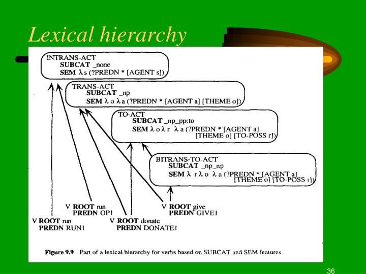 Lexical hierarchy