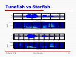 tunafish vs starfish