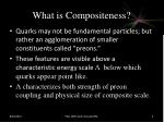what is compositeness