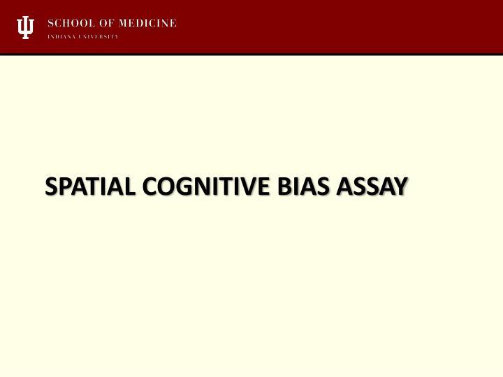Spatial cognitive bias assay