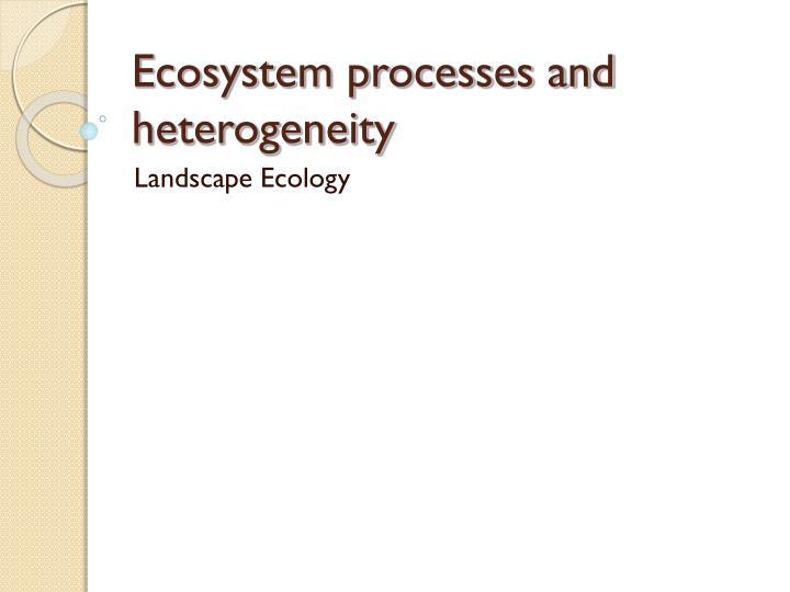 Ecosystem processes and heterogeneity