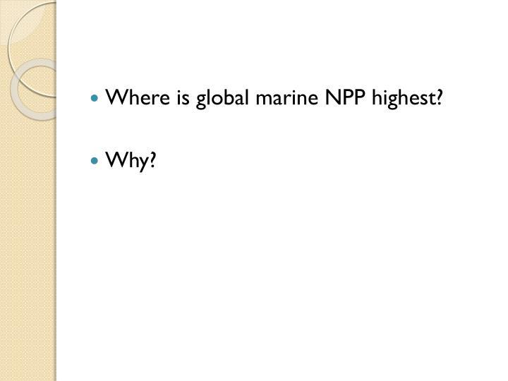 Where is global marine NPP highest?