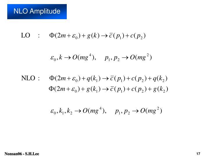 NLO Amplitude