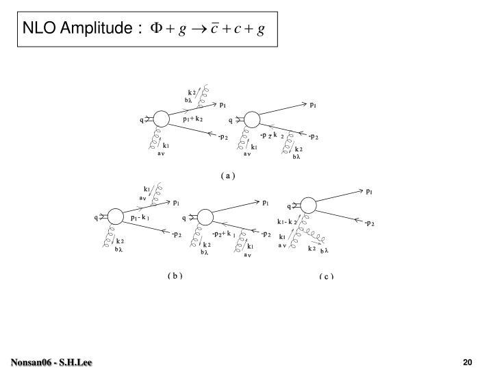 NLO Amplitude :