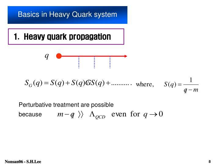 Basics in Heavy Quark system