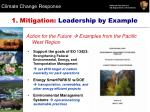 1 mitigation leadership by example1