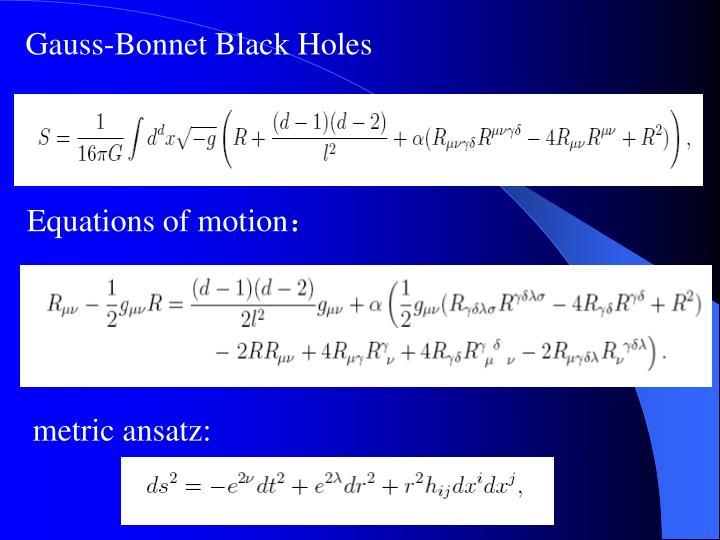 Gauss-Bonnet Black Holes
