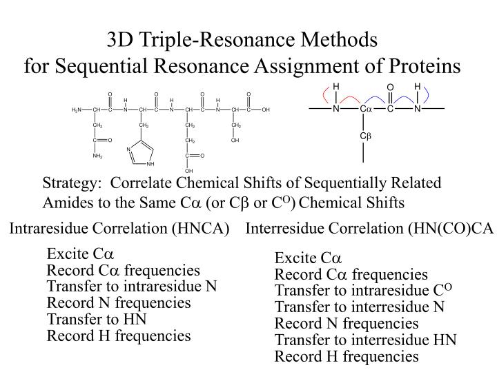 3d triple resonance methods for sequential resonance assignment of proteins n.
