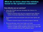 what do we know about the initiative based on the synthesis evaluation1