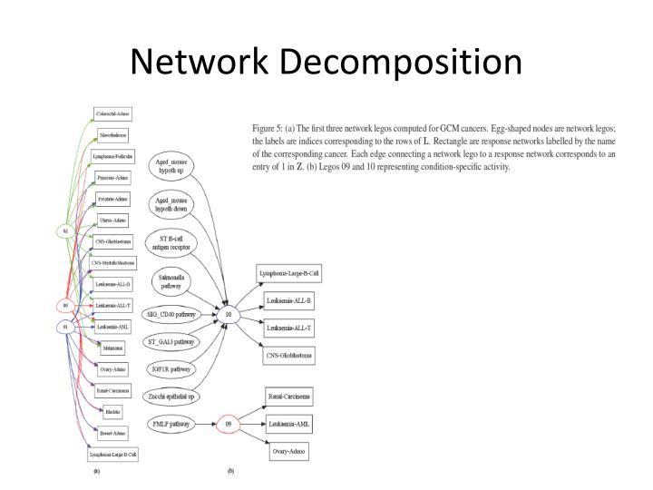Network Decomposition