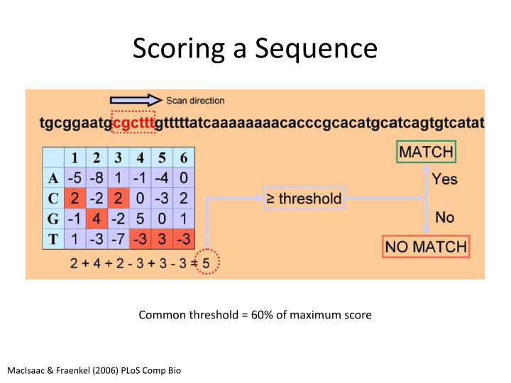Scoring a Sequence