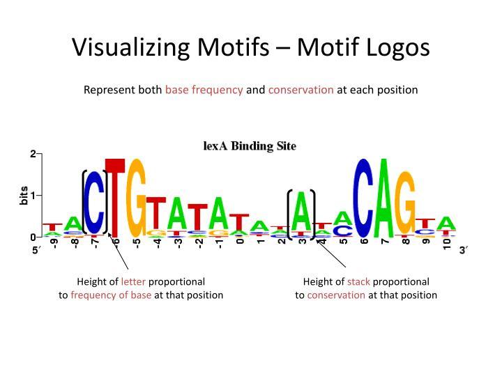 Visualizing Motifs – Motif Logos