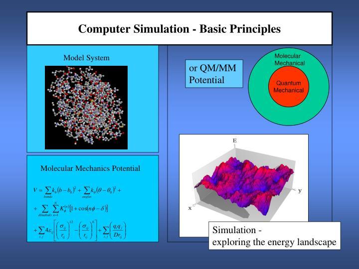 Computer simulation basic principles