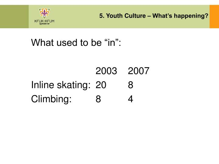 5. Youth Culture – What's happening?