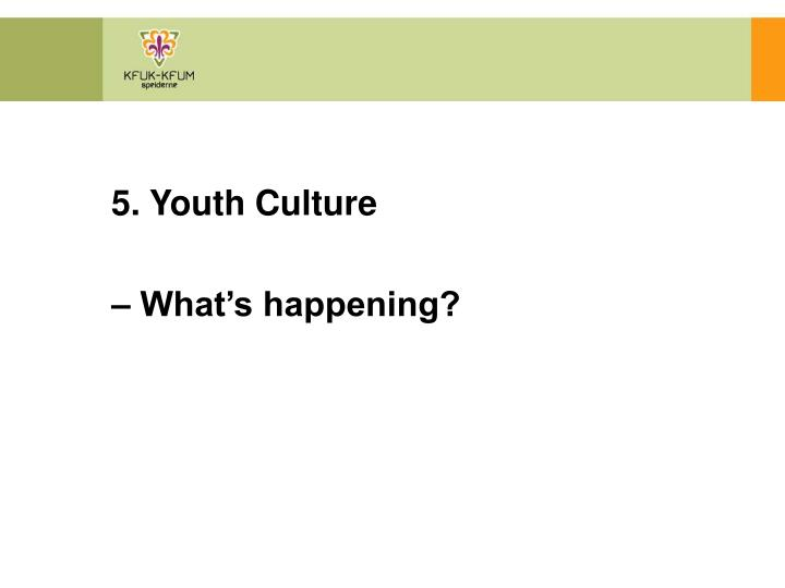 5. Youth Culture