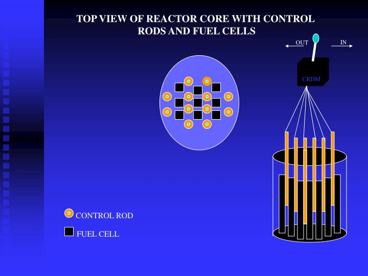 TOP VIEW OF REACTOR CORE WITH CONTROL