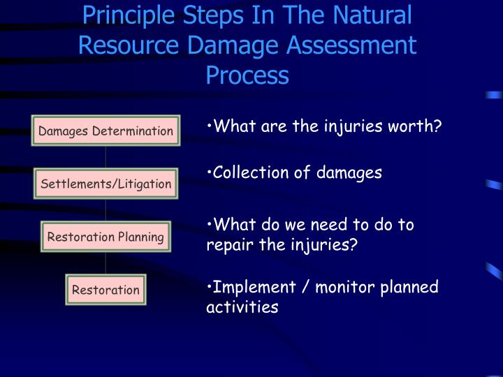 Principle Steps In The Natural Resource Damage Assessment Process
