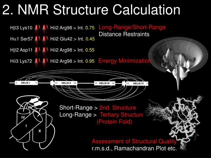 2. NMR Structure Calculation