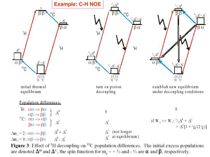 Example: C-H NOE