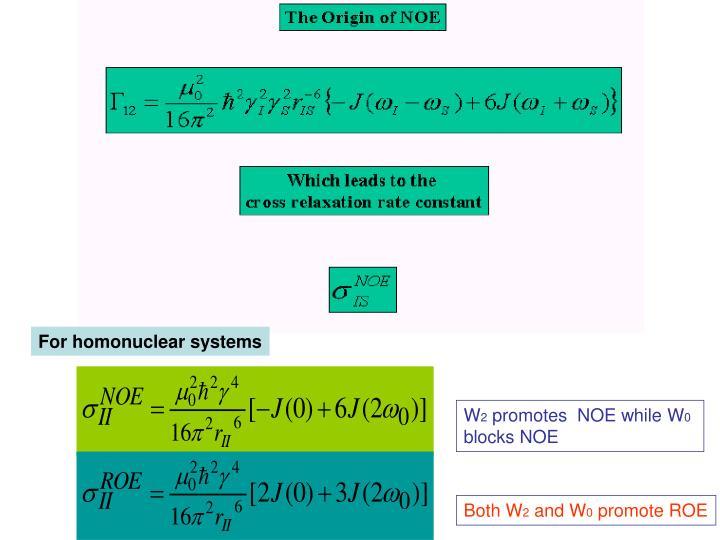 For homonuclear systems