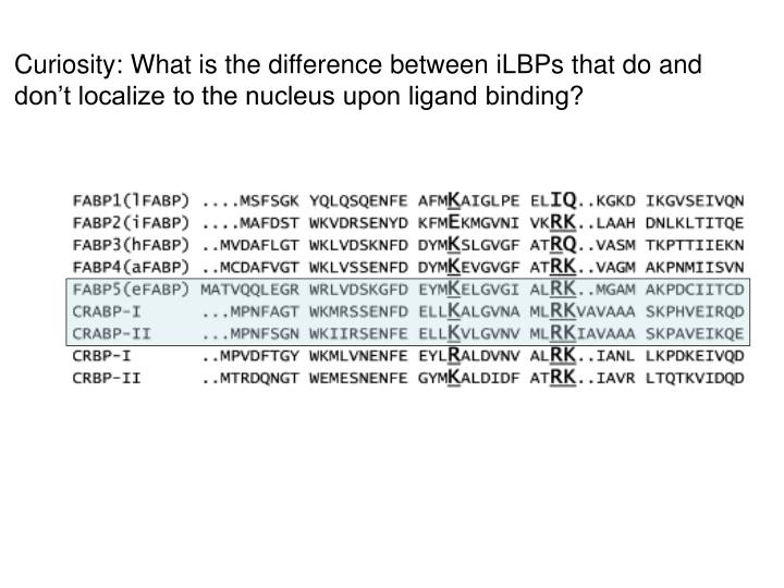Curiosity: What is the difference between iLBPs that do and 	    don't localize to the nucleus upon ligand binding?