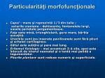 particularit i morfofunc ionale