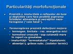 particularit i morfofunc ionale5