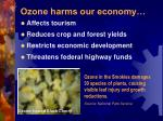 ozone harms our economy