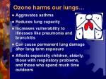 ozone harms our lungs