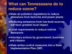 what can tennesseans do to reduce ozone
