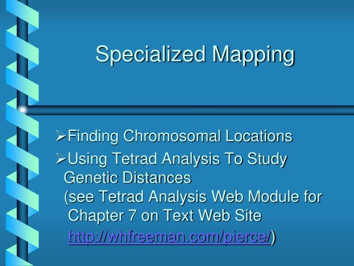 Specialized mapping
