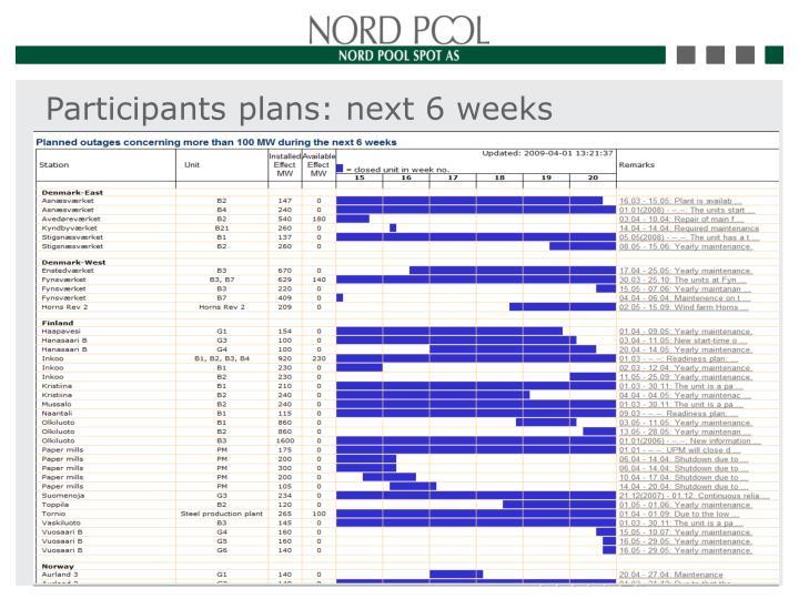 Participants plans: next 6 weeks