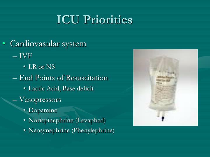ICU Priorities