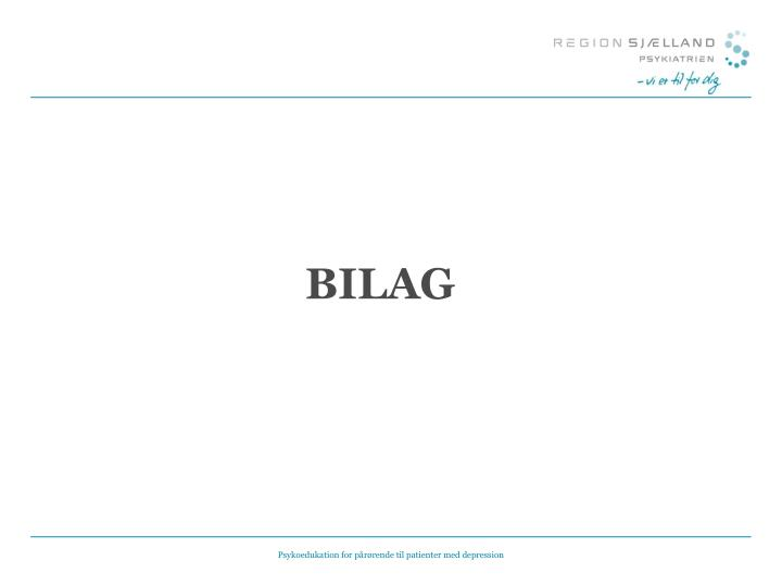 BILAG
