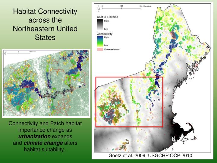 Habitat Connectivity across the Northeastern United States