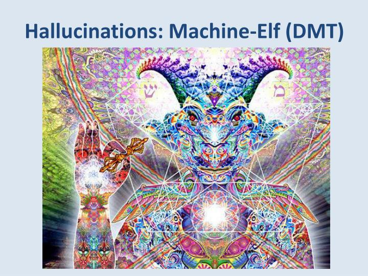 Hallucinations: Machine-Elf (DMT)