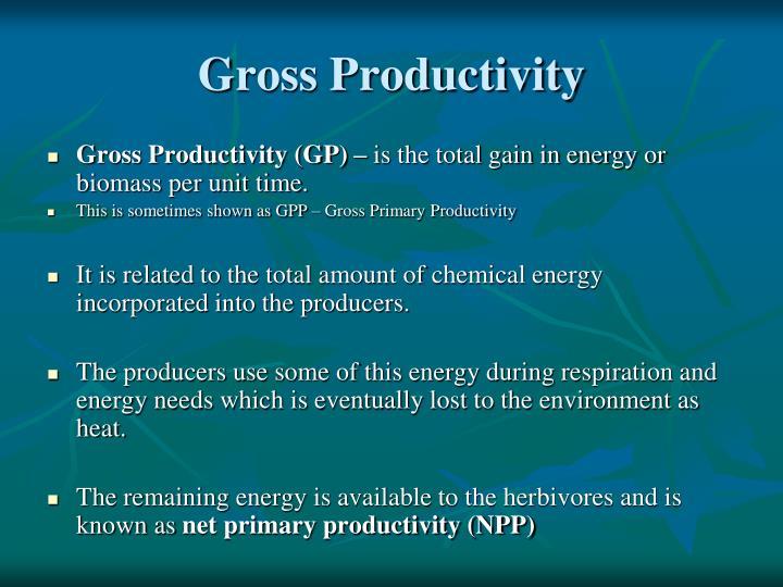 Gross Productivity
