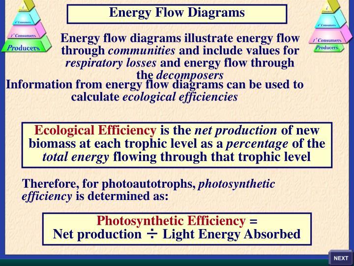 Energy Flow Diagrams