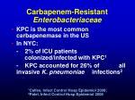 carbapenem resistant enterobacteriaceae3